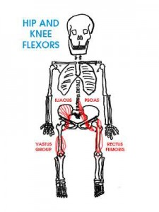 hip-flexor-pain