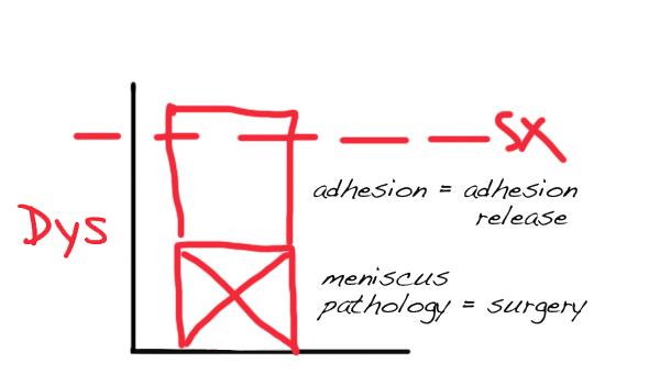 dysfunction-blocks-meniscus-adhesion