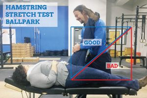 hamstring-stretcpiriformis-syndrome-treatment-hamstring-stretch-testh-test-ballpark