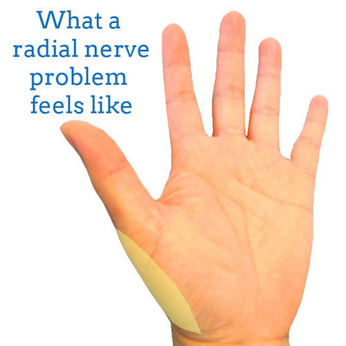radial-nerve-front-hand