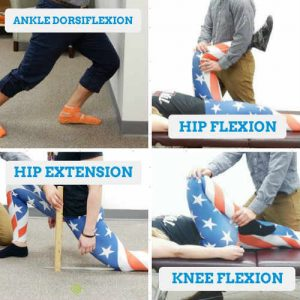 Important-Knee-Ranges-of-Motion