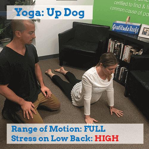 yoga-for-back-pain-up-dog-high-stress