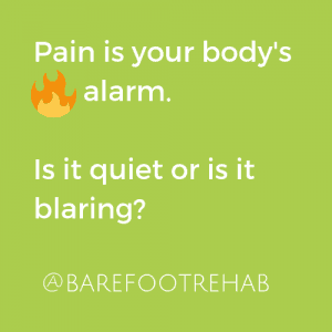 pain-as-fire-alarm